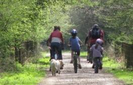 Family cycling and wildlife spotting in the Forest of Dean