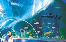 Enjoy an exciting family adventure in Southsea