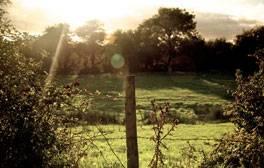 Take a stroll through Durlston Country Park