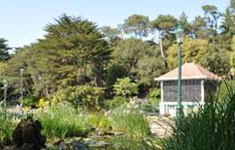 See the gardens in bloom in Bournemouth