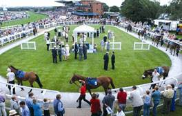 Go to the races at Beverley
