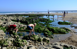 Building sandcastles and rock-pooling at Seaburn beach