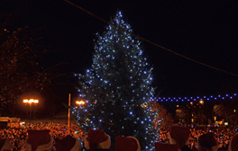 Sunderland's magical Christmas Lights switch-on