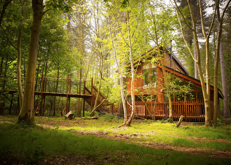 A forest cabin in Thorpe Forest, Norfolk
