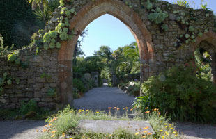 Tresco Abbey Garden, Isles of Scilly