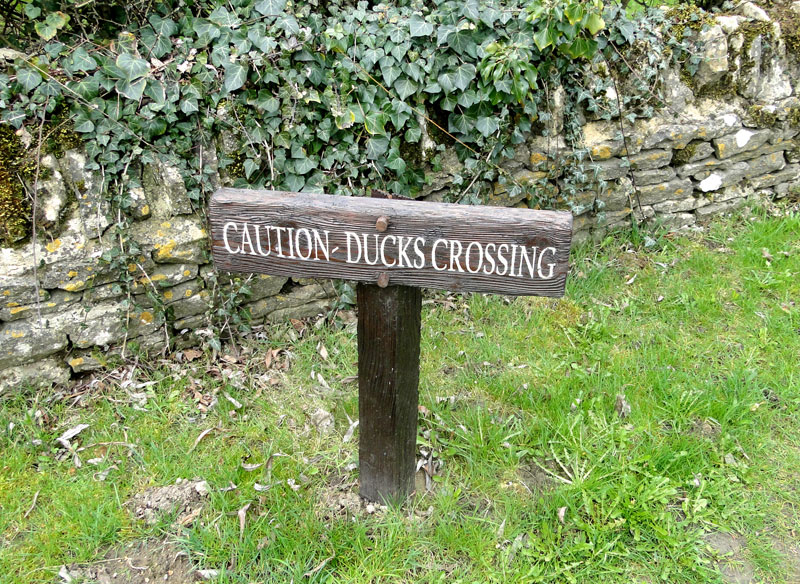 A cute but quackers sign in Oxfordshire…