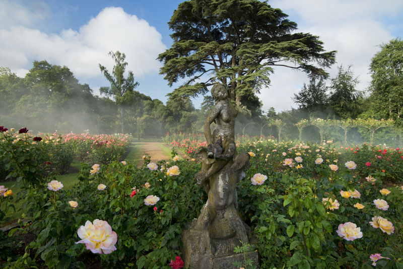 An enchanting rose garden at Blenheim Palace …