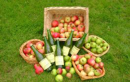 Make your own apple juice in the heart of the Chilterns