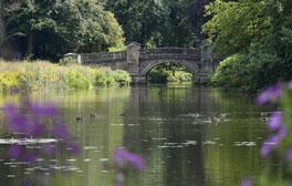 Weston Park - Staffordshire - Paine's Bridge (c) Visit England 264x268