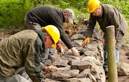 Volunteer on a working weekend in The National Forest