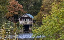 Winkworth Arboretum, Surrey (c)National Trust Images, James Dobson